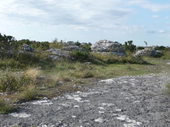 Grogarnsberget